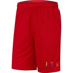 Air Jordan DNA Shorts - AV0114-657