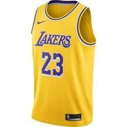 Nike NBA Los Angeles Lakers LeBron James Kids Jersey