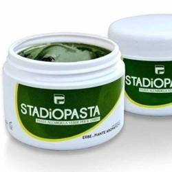 Stadiopasta - Healing ointment for injuries - 250 ml